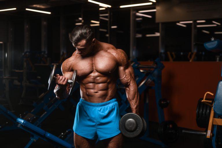 Hvilken metabolisme er den beste for å bygge muskler?