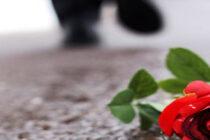Livet er ikke alltid en dans på roser…