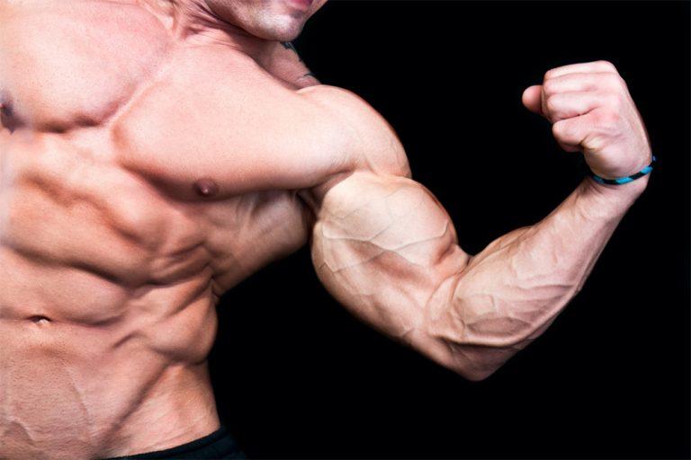 HYPERPLASIA - større muskelceller eller flere celler?